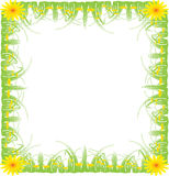 Picture frame, green grass Stock Image