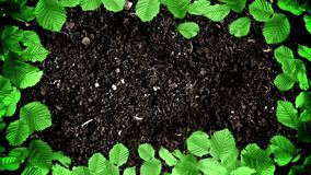 Picture Frame of Green Leaves on a Ground Soil in Stop Motion Style in Seamless Loop. Picture Frame of Green Leaves on a Ground Soil in Stop Motion Style Looping stock illustration