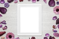 Picture frame with isolated white space for picture or text Stock Image