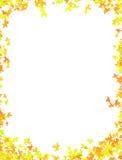Picture frame with leave. Paper frame for letter or stuff Vector Illustration