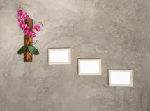 Picture frame. On the wall royalty free stock image