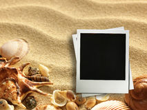 Picture frame on shells and sand background Royalty Free Stock Image