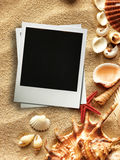 Picture frame on shells and sand background Stock Image