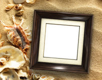 Picture frame on shells and sand background Royalty Free Stock Photo