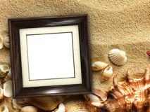 Picture frame on shells and sand background Stock Photos
