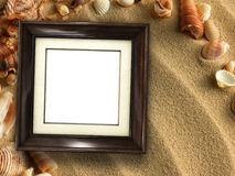 Picture frame on shells and sand background stock illustration