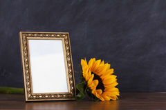 Picture frame and sunflower against a dirty blackboard backgroun Royalty Free Stock Image