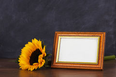 Picture frame and sunflower against a dirty blackboard backgroun Royalty Free Stock Photo