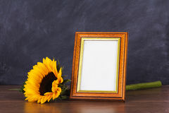 Picture frame and sunflower against a dirty blackboard backgroun Stock Photos