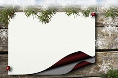Picture Frame, Tree, Fir, Christmas Ornament Royalty Free Stock Image