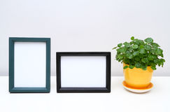 Picture Frames for Home Decoration. Royalty Free Stock Images