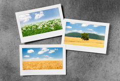 Picture frames with  photos Stock Photo