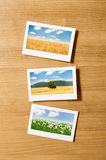 Picture frames with  photos Royalty Free Stock Photos