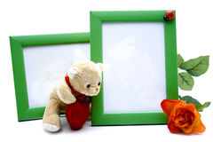 Picture frames with rose and plush bear. On white background stock image