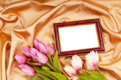 Picture frames and tulips flowers. On satin Stock Image