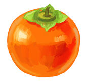 Picture of fruit persimmon Royalty Free Stock Photos