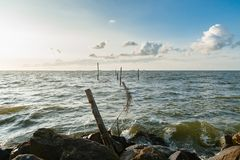 Picture of a fyke or fishing net at the IJsselmeer lake in the N. A lake at sunset with traditional fishing gear and waves that hit the coast Royalty Free Stock Photos