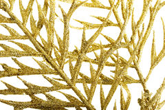 Picture of a gold separate twig, close up. Royalty Free Stock Image
