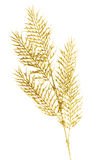 Picture of a gold separate twig. Royalty Free Stock Images