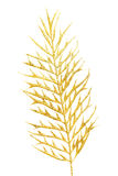 Picture of a gold separate twig. Royalty Free Stock Photography