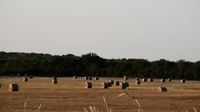 Hay! Field in Harvest stock photos