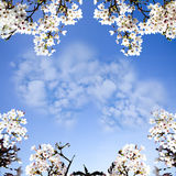 Picture of a a heart cloud on blue sky Royalty Free Stock Photo