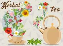Picture with herbal supplements for tea and inscription. Vector illustration. Stock Photography