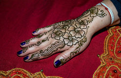 Picture of human hand being decorated with henna Stock Photos