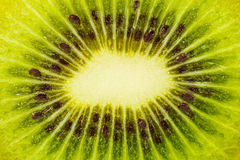 Picture of Kiwi Fruit Stock Images