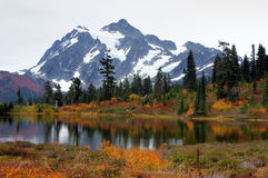 Picture lake at mount Baker Royalty Free Stock Images