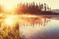 Picture lake Royalty Free Stock Photo