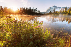 Picture lake Royalty Free Stock Photos