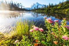 Picture lake Stock Photography