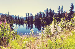 Picture lake Royalty Free Stock Images