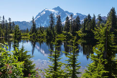 Picture lake Royalty Free Stock Photography