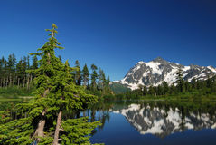 Picture lake and mt shuksan royalty free stock photography