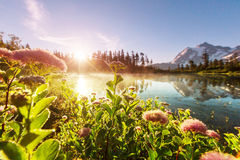Picture lake. Scenic Picture lake with mount Shuksan reflection in Washington, USA royalty free stock images