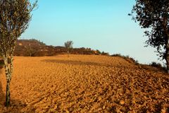 Picture of a landscape view due to an drought. Royalty Free Stock Images
