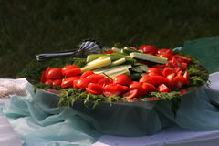 Picture a large metal deep dish with chopped vegetables on a picnic. On the platter lay slices and slices of cucumber, tomato and bundles of herbs - parsley Stock Photos