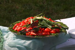 Picture a large metal deep dish with chopped vegetables on a picnic. On the platter lay slices and slices of cucumber, tomato and bundles of herbs - parsley Royalty Free Stock Photography