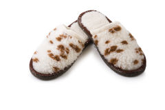 Picture of leopard slippers Stock Images