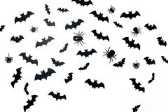 Picture of a lot of black bats and spiders on a white background royalty free stock image