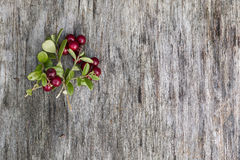Picture made of leaves and berries Stock Photography