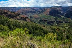 Waimea Canyon, Kauai, Hawaii. This is a picture of the majestic Waimea Canyon, Kauai, Hawaii. Also known as the Grand Canyon of the Pacific Stock Images