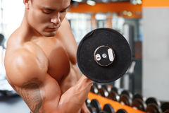 Picture of man lifting weight in gym Royalty Free Stock Photography