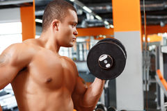 Picture of man lifting weight in gym Royalty Free Stock Image