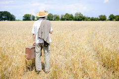 Picture of man with suitcase in the wheat field on Royalty Free Stock Image