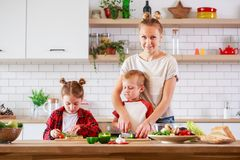 Picture of mother with daughter and son cooking at table stock photography