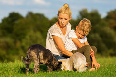 Mother with her son playing with two small dog Stock Images