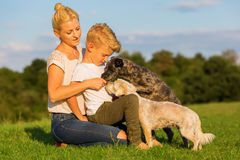 Mother with her son playing with two small dog. Picture of a mother with her son playing with two small dog outdoors Stock Photo